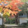 お寺の紅葉(^^)/