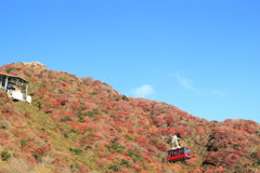 雲仙妙見岳の山頂付近の紅葉