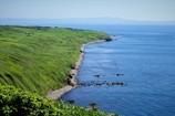 焼尻島の緑と海の青