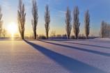 冬の美しさ