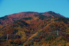 太郎山の紅葉