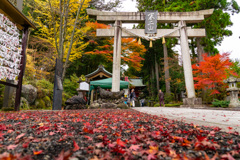 東口本宮冨士浅間神社の紅葉祭_DSC07007
