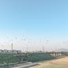 気球の飛ぶ町