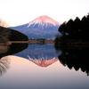 新年の田貫湖 8