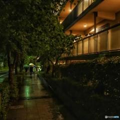 雨坂の帰宅