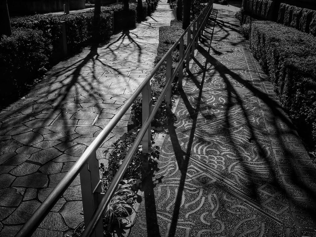 冬の影長く