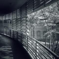 廊下からの印象