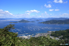 砲台山から見る似島(安芸小富士)+おまけ(トンボ)