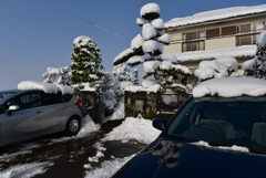 雪景色IV!