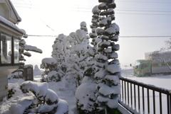 雪景色II!
