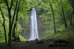 涼感・玉簾の滝