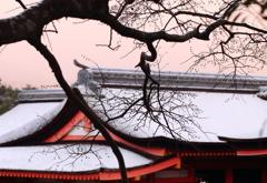 寒波襲来 厳島神社