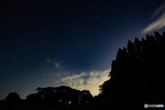 星と雲と森