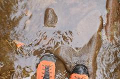 水溜りの登山道