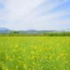信濃の国「春」