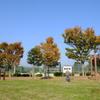 秋晴れ(1)