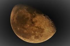 月のむこうの暗さ
