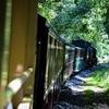 森を行く蒸気機関