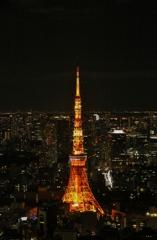 ガラス越しの東京タワー