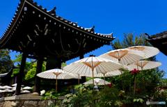 青空に白い傘