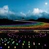 電飾の夕景