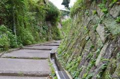 裏通りの坂④