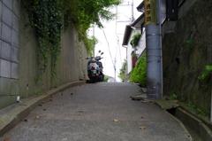 裏通りの坂⑤