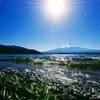 波打つ河口湖