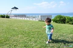 美ら海の風