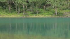 魅惑の沼 百景 V