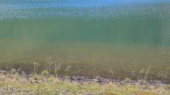 魅惑の沼 百景 II