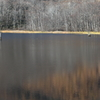 池面のパレット III