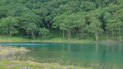 魅惑の沼 百景 I