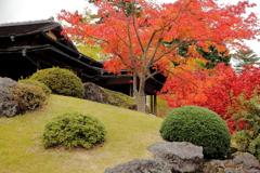 紅葉の箱根美術館
