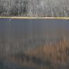 池面のパレット I
