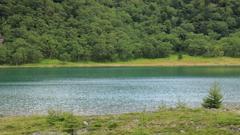 魅惑の沼 百景 IV