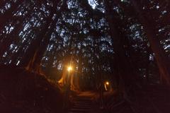 夕暮れ山中