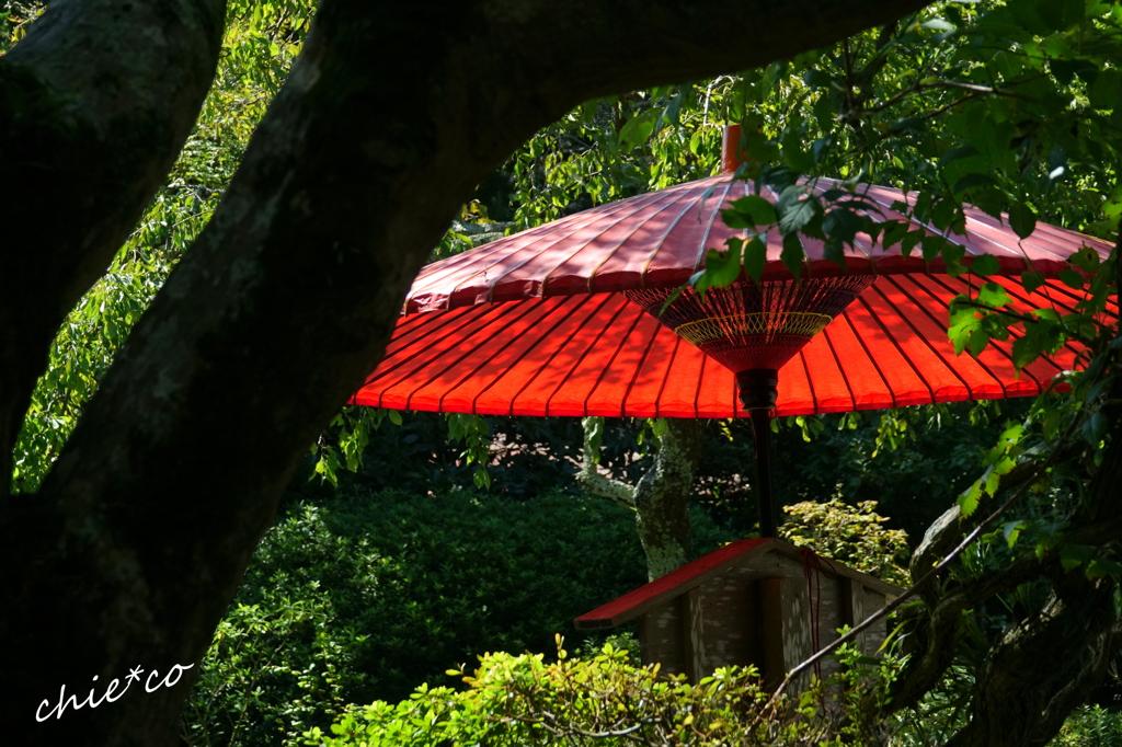 鎌倉-230