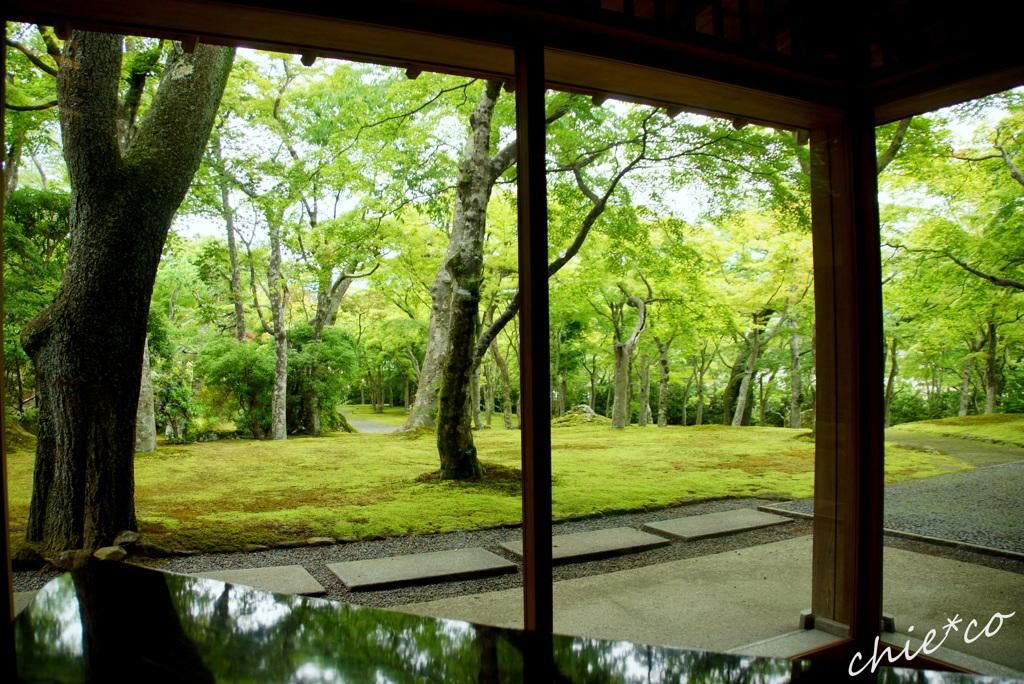 箱根美術館-176