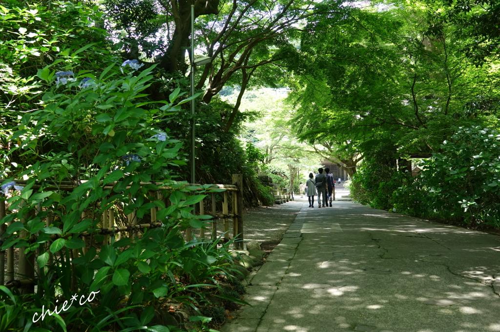 鎌倉-109