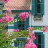 山手イタリア山庭園-269