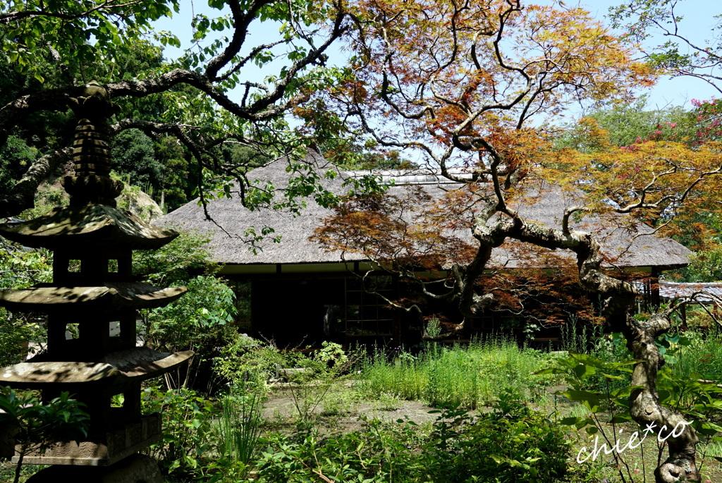 鎌倉-664