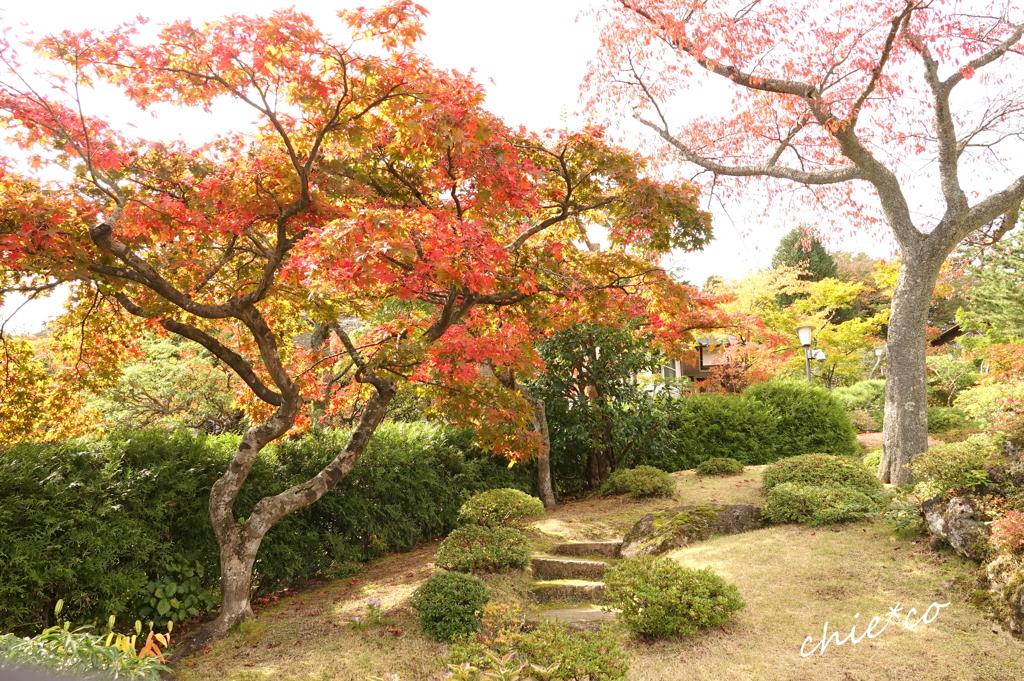 箱根美術館庭園-195
