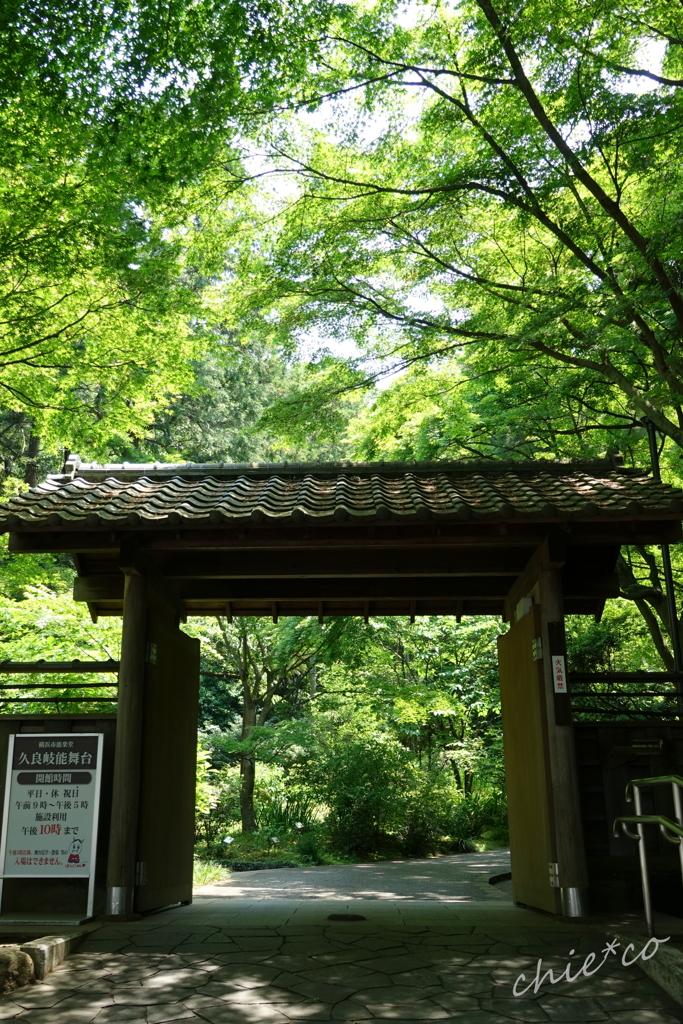 久良岐公園-250