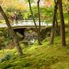 箱根美術館庭園-221