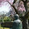 鎌倉-462
