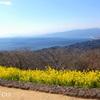 吾妻山公園-256