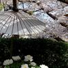 鎌倉-513