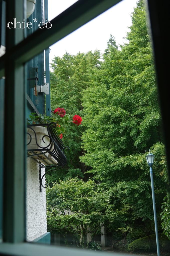 山手イタリア山庭園-305