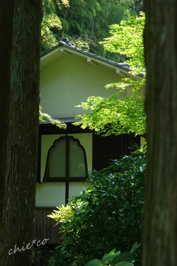 久良岐公園-243